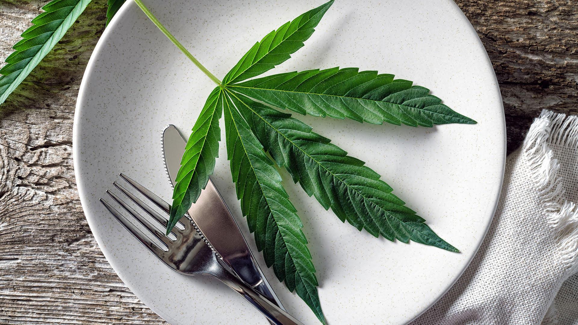 Comfort Food & Cannabis